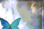 blubutterflypiece
